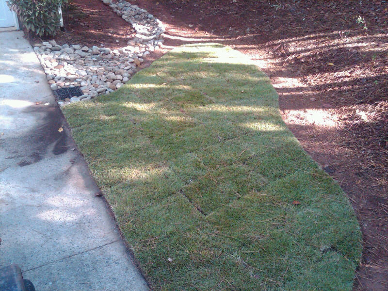 Gibbs Lawn Design Drainage Solutions